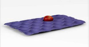 شانه میوه مقوایی