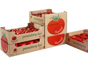 فروش شانه مقوایی میوه