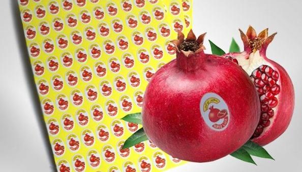 انواع لیبل میوه سعید شعبانی